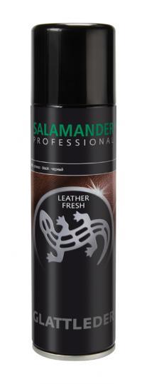 Salamander Догляд 00000004948 1